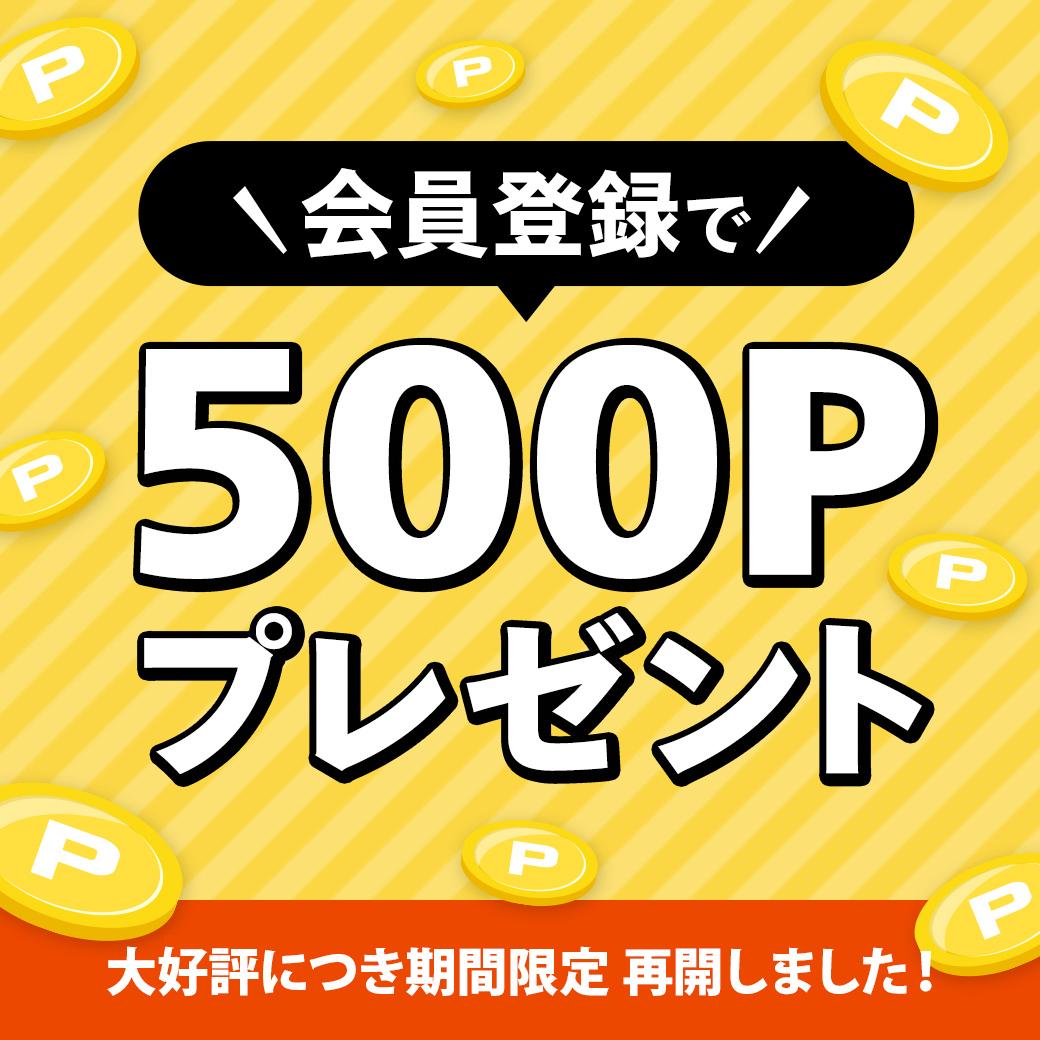 500p_1040x1040.jpg